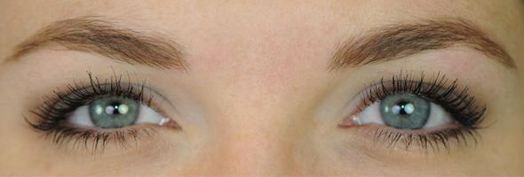 RAL amazing eyeshadow look