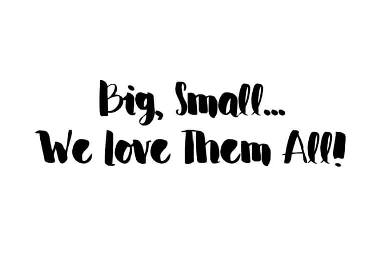Big, Small…We Love Them All!