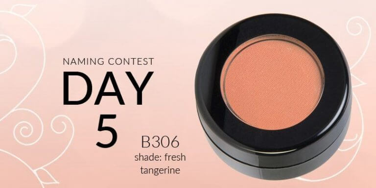 Red Apple Lipstick's Blush + Bronzer Naming Contest: Day 5 CLOSED