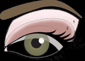 STEP 2 - Sweep Made You Wink onto eyelid.