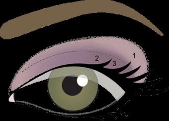 STEP 3- Sweep Violet Vintage onto outer 1/2 of eyelid.